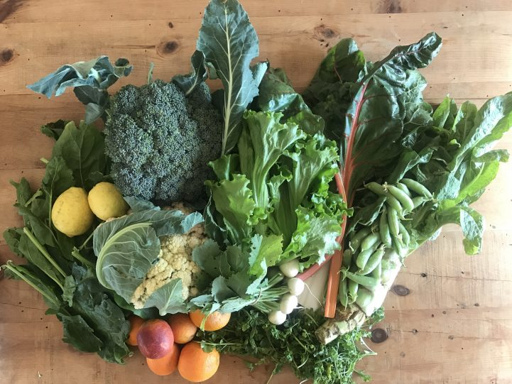 CSA Haul for March