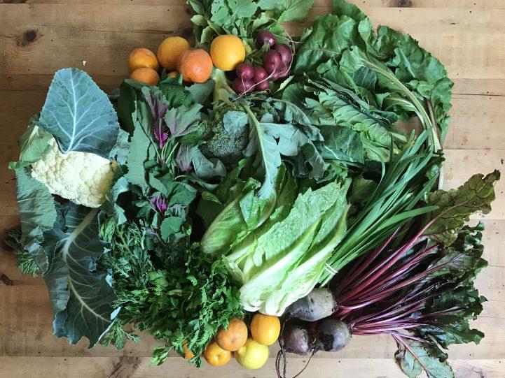 csa haul organic veggies