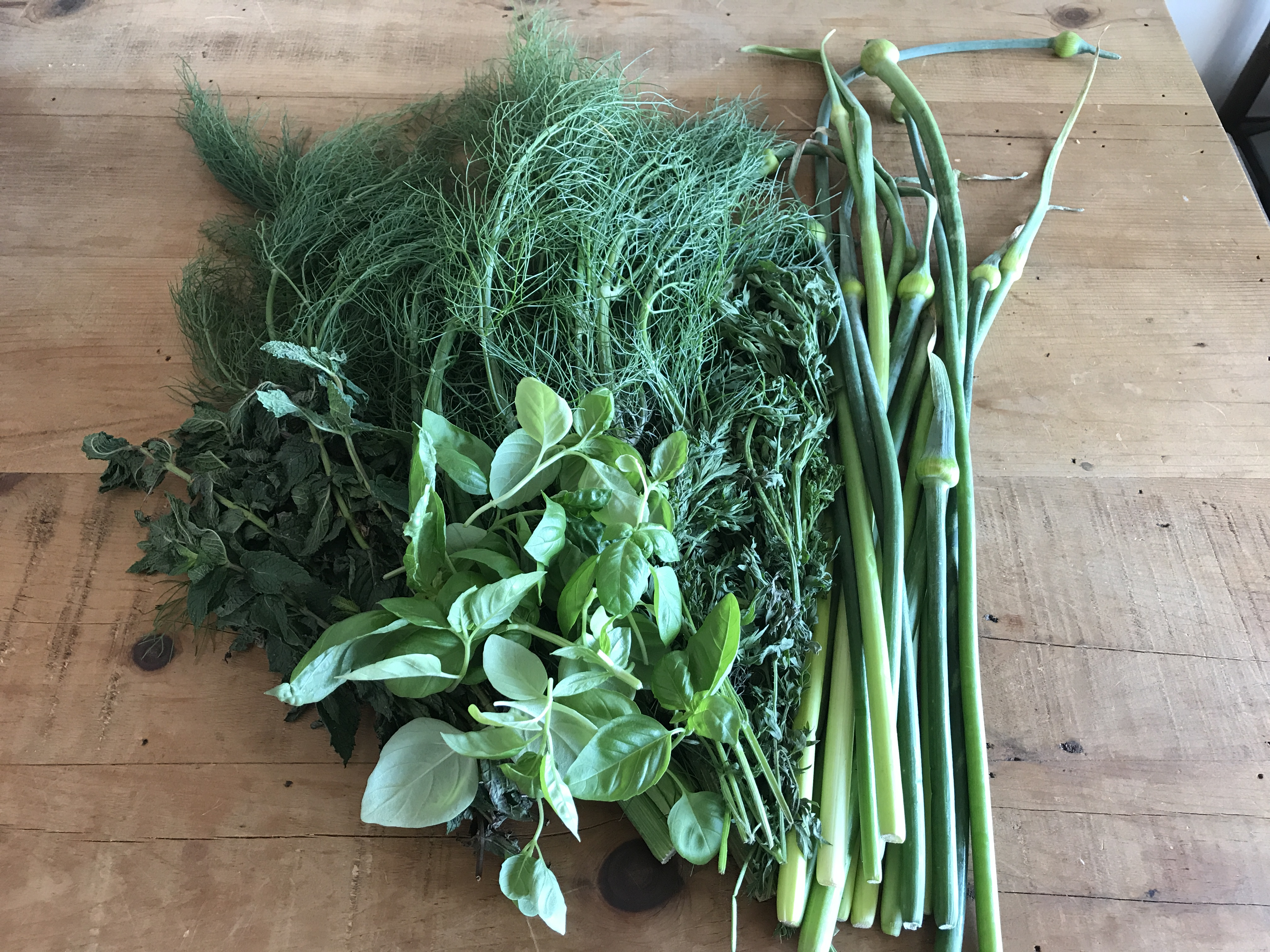 aromatic greens for pesto